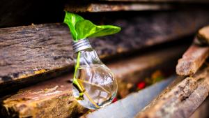 Treasury's evolution to participate in corporate's ESG initiatives